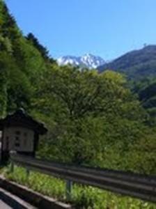 【お得な連泊プラン】奥飛騨の新緑&温泉三昧